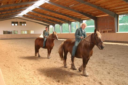 Zwei Reiter in der Reithalle des Marienhofes