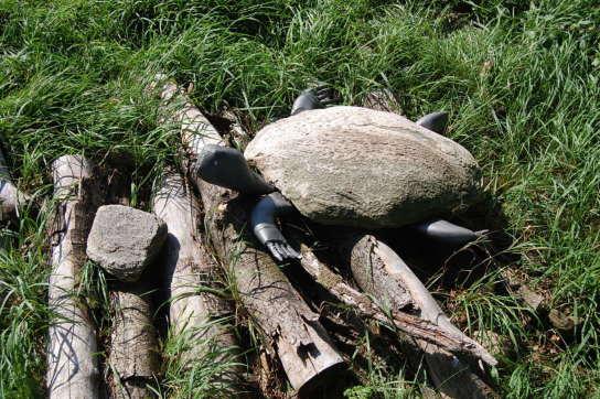 Sie sehen eine Schildkröte, deren Panzer aus einem Stein gemacht ist.