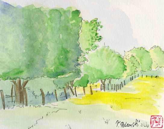 hügelige Wiesen und im Hintergrund Bäume als Aquarell