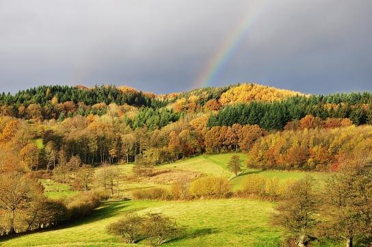 Schoothorster Tal mit Regenbogen im Frühherbst (Naturpark Hüttener Berge)