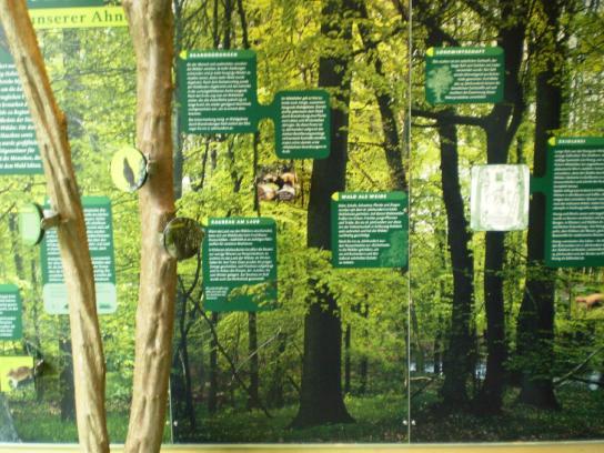 Ein Thema der Ausstellung in unserem Informationsgebäude.