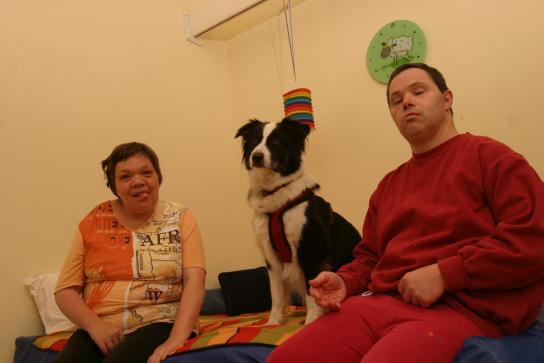 Kontakt zum Vierbeiner in der Tiertherapie