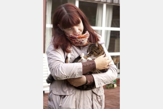 Eine Katze auf dem Arm