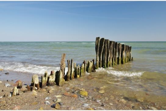 Wir sehen die Ostsee und am Ufer Holzplanken, die einen Zaun bilden