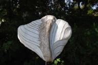 Sie sehen einen Schmetterling aus Marmor mit Gneis