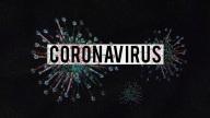 Das Bild zeigt Viren, wie man sie unter einem Mikr