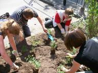 Teilnehmer bepflanzen ein Hochbeet