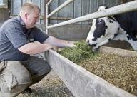 Bild Ein Mitarbeitender mit Handicap füttert eine