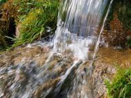 Auf dem Bild sieht man den Austritt der Quelle an der Erdoberfläche mit dem sprudelndem Quellwasser.