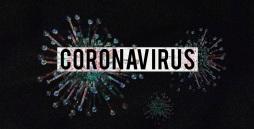 Das Bild zeigt Viren, wie man sie unter einem Mikroskop erkennen kann.