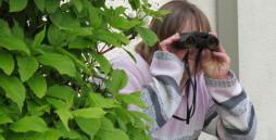 Auf dem Bild sieht man eine Person, die hinter einem Busch hervorschaut und durch ein Fernglas sieht.