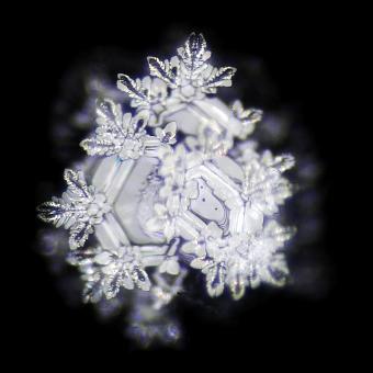 Drei gut2-Wasserkristalle sind hier zu erkennen. S