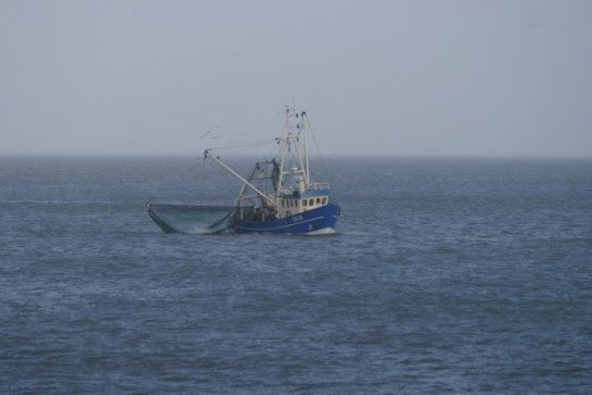 Bild: Ein Fischkutter auf Fang