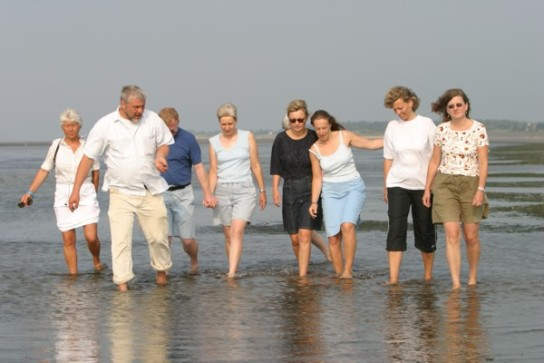 Bild: Eine Gruppe macht eine Geführte Wattwanderung, angeboten vom Marienhof