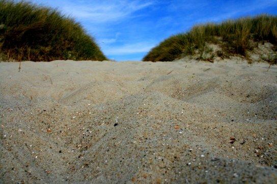 Bild: Sandstrand mit Dünen im Ort Utersum an der Westseite von der Insel Föhr