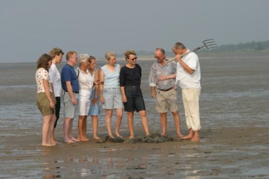 Erkundung der Meeresbewohner bei einer Wattwanderung