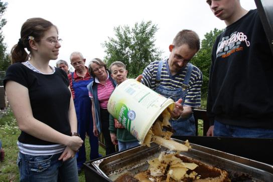 Die Mitarbeiter der Imkergruppe sammeln Bienenwaben in einen Behälter.