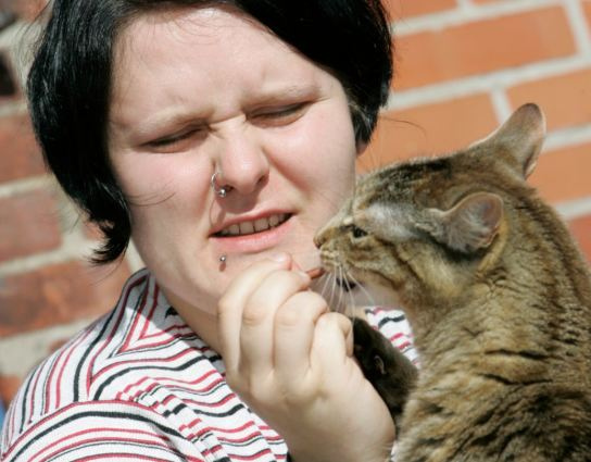 Frau füttert Katze