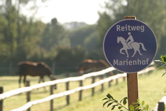 Hinweisschild Reitweg Marienhof mit Pferd