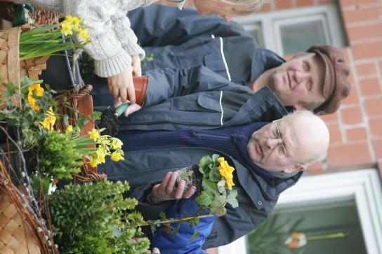 Aussuchen von Blumen