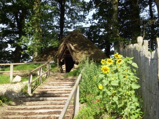 Das Bild zeigt die Treppe zu einer Erdhütte auf dem Kolonistenhof.