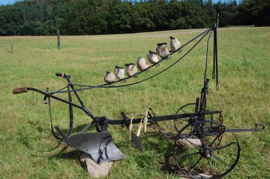 Alter Pflug aus Metall mit sieben Rabenvögeln (Körper aus Stein, Schnäbel aus Metall) darauf