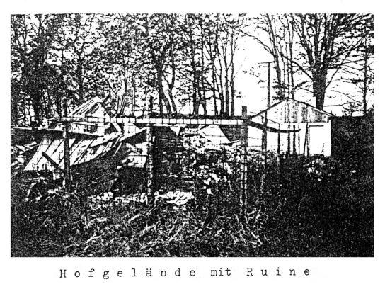Das Bild zeigt einen Teil des Kolonistenhof-Geländes mit Ruine von 1989.