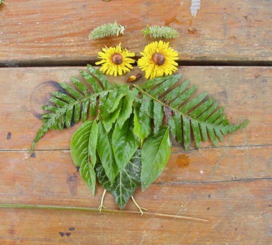Verschiedene Blätter und Blüten bilden zusammengefügt das Bild einer Eule ab.