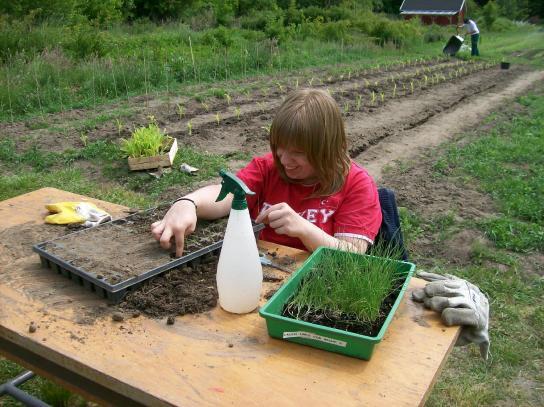 Eine Teilnehmerin bepflanzt eine Schale