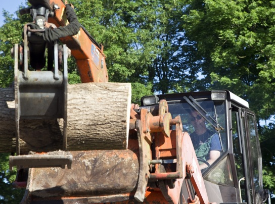 Bild Ein Mitarbeiter mit Handicap bewegt mit einem Frontlader Baumstämmme