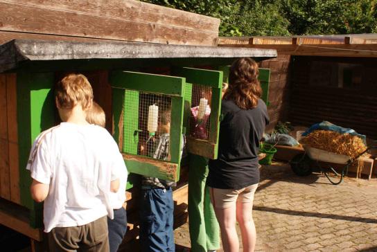 3 Kinder stehen vor einem Kanienchenstall