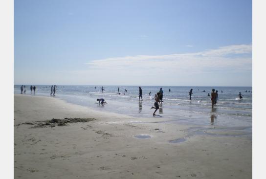 Kinder spielen an der Wasserkannte