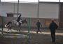 Eine Reiterin Überwindet den Parcour.
