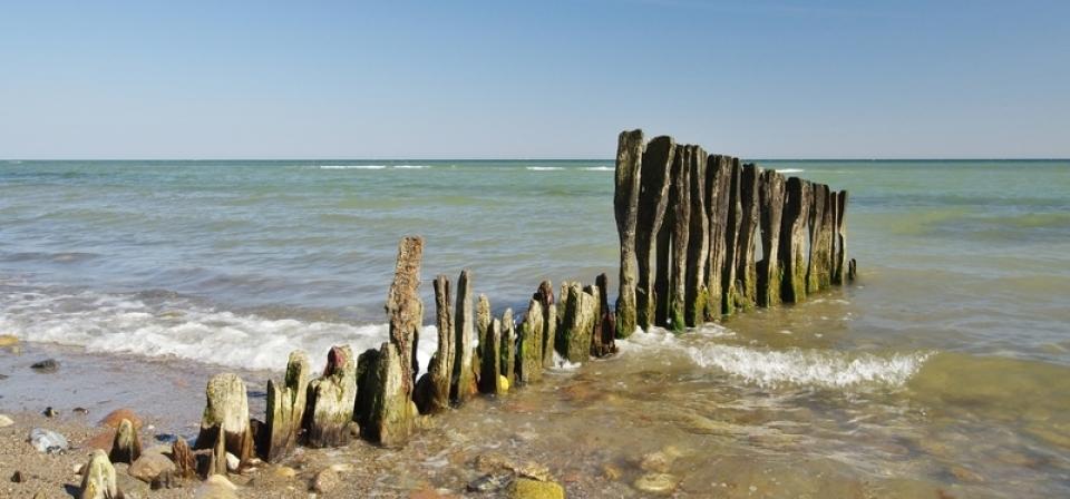 Wir sehen die Ostsee und am Ufer Holzplanken, die