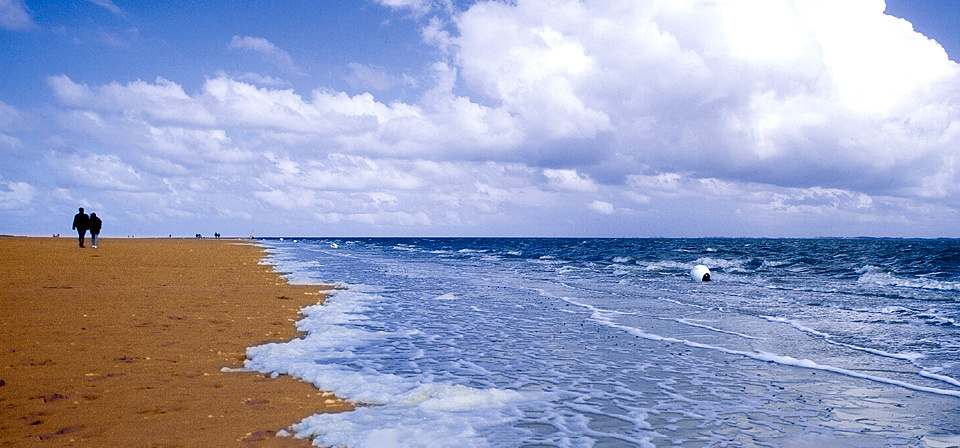 Flutsaum an der Nordsee
